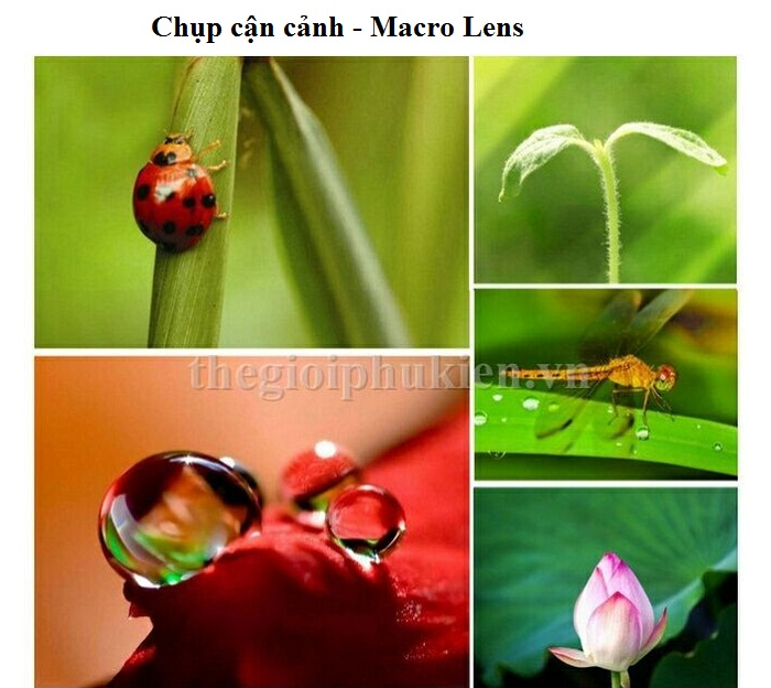 lens chup hinh 3 in 1 11